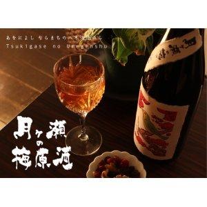 画像1: 【高級梅酒】月ヶ瀬の梅原酒  無濾過  1800ml